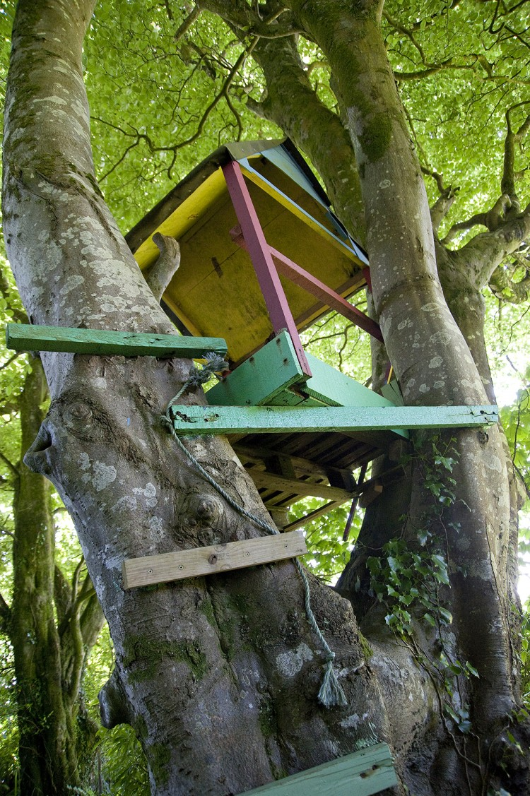 Tree house at Bosvathic Lodge