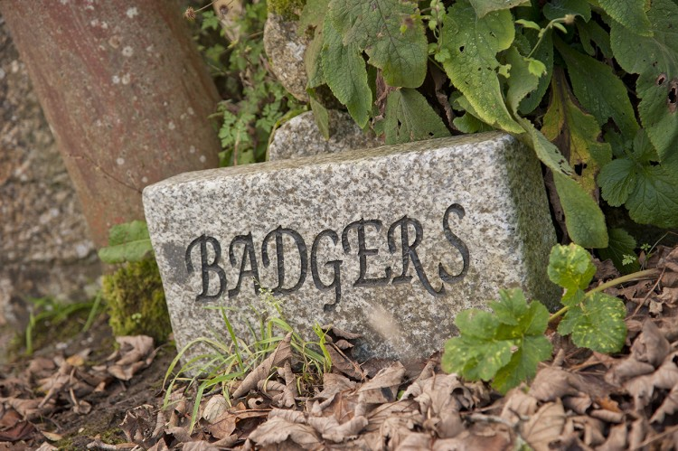 Badgers house sign